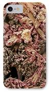 Gypsum Crystals, Sem IPhone Case by Steve Gschmeissner
