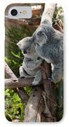Koala IPhone Case by Carol Ailles