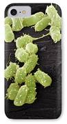E. Coli Bacteria, Sem IPhone Case by Steve Gschmeissner