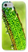 Dewdrops On Lemongrass IPhone Case by Thomas R Fletcher