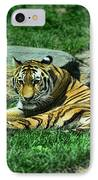 A Tiger's Gaze IPhone Case by Paul Ward