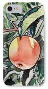 Apple Tree Sketchbook Project Down My Street IPhone Case by Irina Sztukowski