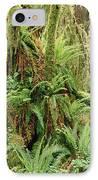 Bigleaf Maple Acer Macrophyllum Trees IPhone Case by Gerry Ellis