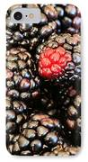 Blackberries  IPhone Case by JC Findley
