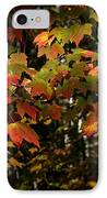 Changing Of The Colors IPhone Case by Rich Franco