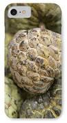 Cherimoya Fruit (annona Cherimola) IPhone Case by Bjorn Svensson