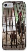 Chickens In Bamboo Cage IPhone Case by David Buffington