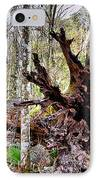 Cypress Roots IPhone Case by Kristin Elmquist