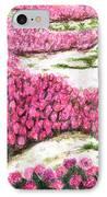Desert Flowers IPhone Case by Glenda Zuckerman