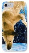 Diving Dog 3 IPhone Case by Jill Reger