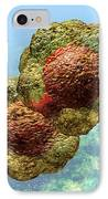 Geminivirus Particle IPhone Case by Russell Kightley