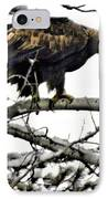 Golden Eagle Watches IPhone Case by Don Mann