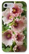 Hollyhock (alcea Rosea) IPhone Case by Dr Keith Wheeler