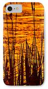 Horicon Cattail Marsh Wisconsin IPhone Case by Steve Gadomski