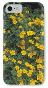 Marigolds (tagetes 'tangerine Gem') IPhone Case by Adrian Thomas