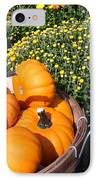 Mini Pumpkins IPhone Case by Kimberly Perry