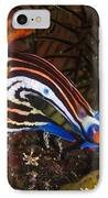 Nudibranch IPhone Case by Matthew Oldfield