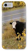 Oooops Wrong Trail IPhone Case by Ernie Echols
