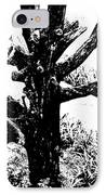 Ornamental Dead Tree By The Path IPhone Case by Kantilal Patel
