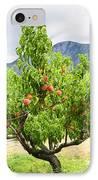 Peaches On Tree IPhone Case by Elena Elisseeva