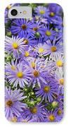 Purple Reigns IPhone Case by Joan Carroll