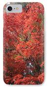 Red Tree IPhone Case by Naxart Studio