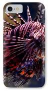 Sea Lion IPhone Case by Pravine Chester