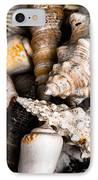 Seashells IPhone Case by Hakon Soreide