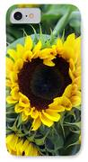 Sharing The Love IPhone Case by Linda Mishler