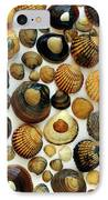Shell Background IPhone Case by Carlos Caetano
