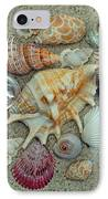 Shell Collection 2 IPhone Case by Sandi OReilly