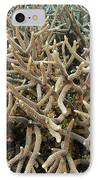 Staghorn Coral IPhone Case by Matthew Oldfield