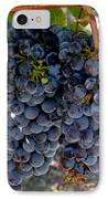 The Concord IPhone Case by Richard Ortolano
