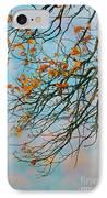 Tree Branches In Autumn IPhone Case by Gabriela Insuratelu