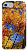 Autumn Forest IPhone Case by Elena Elisseeva