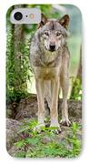 Timber Wolf IPhone Case by Michael Cummings
