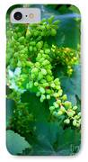 Backyard Garden Series - Young Grapes IPhone Case by Carol Groenen