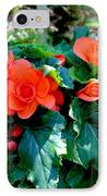 Begonia Plant IPhone Case by Corey Ford