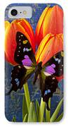 Black And Pink Butterfly IPhone Case by Garry Gay