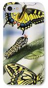 Butterflies IPhone Case by English School
