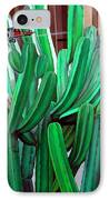 Cactus Fly By IPhone Case by Snake Jagger