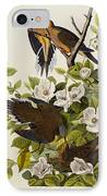 Carolina Turtledove IPhone Case by John James Audubon