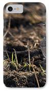 Crested Lark IPhone Case by Cliff  Norton