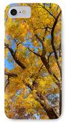 Crisp Autumn Day IPhone Case by James BO  Insogna