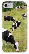 Holstein Cattle IPhone Case by Gaspar Avila