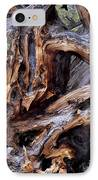 Limber Pine Roots IPhone Case by Leland D Howard