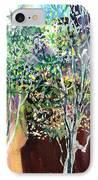 Maya IPhone Case by Anil Nene