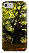Old Old Angel Oak In Charleston IPhone Case by Susanne Van Hulst