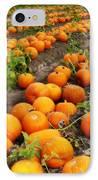 Pumpkin Patch IPhone Case by Carol Groenen