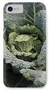 Savoy Cabbage In The Vegetable Garden IPhone Case by Carol Groenen